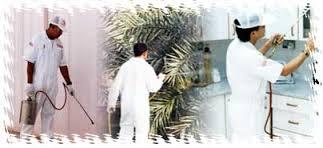 شركة رش مبيدات بالرياض0538156829
